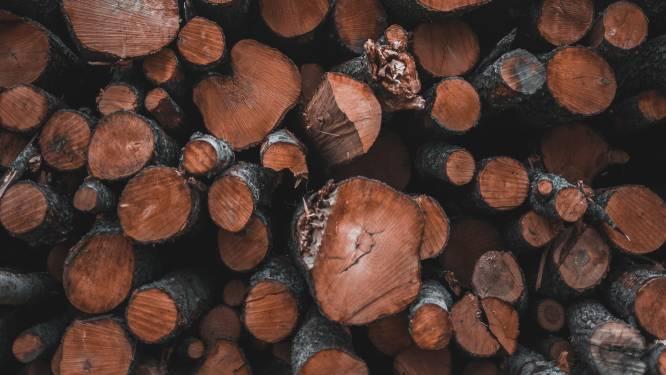 Stad Zoutleeuw lanceert premiereglement voor houtige reststromen