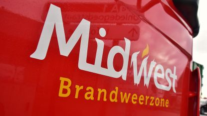 Weduwe (84) verdrinkt in vijver