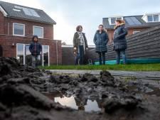 Nieuwe bewoners Harderwijk met de voeten in het water