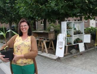 """Vicky ruilt plantjes in eerste stekjesbieb van de streek: """"Andere liefhebbers een plezier doen met je overschotjes"""""""