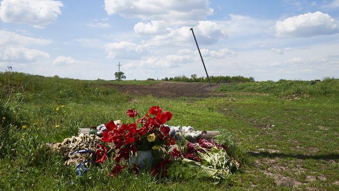 Een bos tulpen die door lokale bewoners zijn neergelegd bij de burnsite ter gedachtenis aan de slachtoffers van vlucht MH17 van Malaysia Airlines