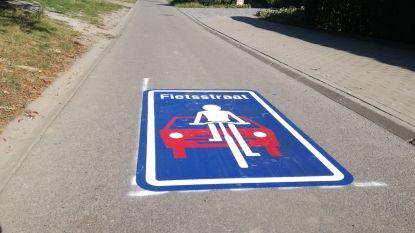 Er komen nog fietsstraten en zelfs een fietsplan in Gooik