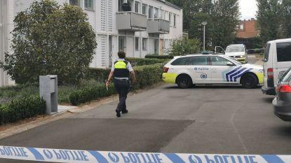 Drie broers vechten familieruzie uit met messen in Wilrijk