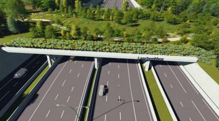Een toekomstbeeld van het ecoduct over de ring in Zellik. In het midden van de brede oversteek zien we ook een pad voor fietsers en voetgangers.