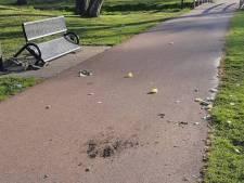 Politie op zoek naar daders van vernielingen in Winterswijk