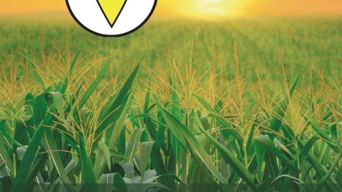 Fietstocht langs landbouwbedrijven promoot Geelse korte keten