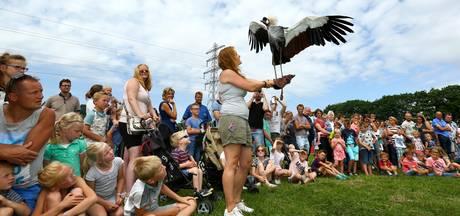 Duizenden bezoekers vieren het feestje voor de 'Valkenezen'