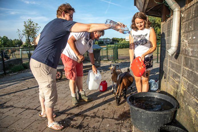 Annemijn Kroon (rechts), Andre Nijboer en Saskia van Altena vullen water bij voor de dieren.
