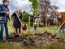 Son en Breugel herdenkt met kastanjeboom Anne Frank en andere oorlogsslachtoffers