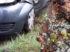 'Rustig aan met dat gaspedaal', auto slipt uit bocht in Schijndel en botst tegen boom