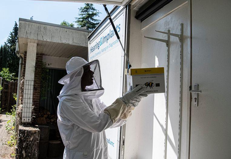 Martijn Agterberg, bezig met de hommels voor zijn mobiele lab.  Beeld Koen Verheijden