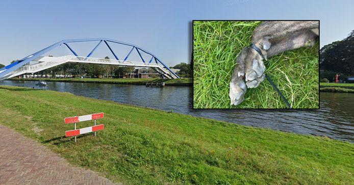 De vindplaats van de hond bij Zwolle. Inzet: het dier met de vastgebonden voorpoten.