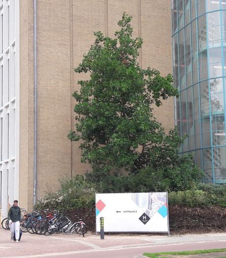 Statushouders en ex-daklozen in oude Philips Bedrijfsschool Eindhoven