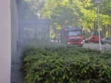 Vrouw doet aan hekserij en sticht brand in belastingkantoor Breda: tien maanden cel