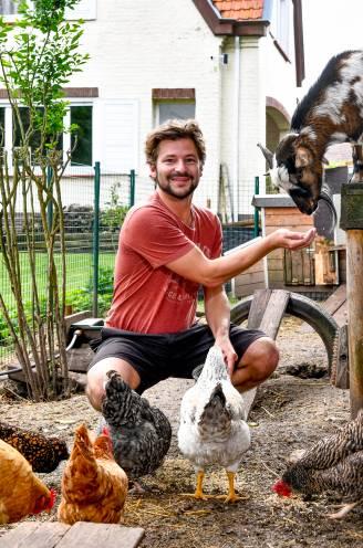 """Eierverbod krijgt band tussen Vlaming en zijn kippen niet stuk: """"Als ik de ren opendoe, voel ik me als God in Frankrijk"""""""