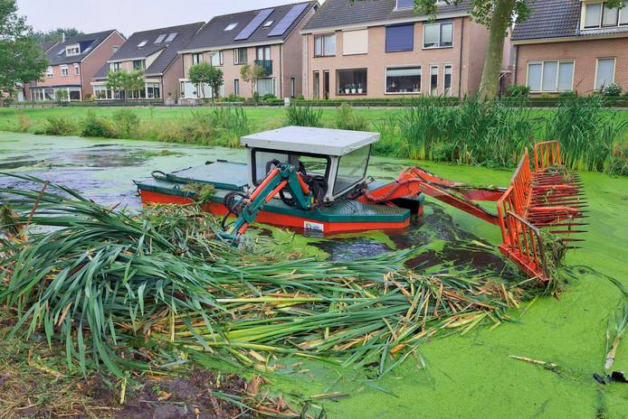 Het waterschap houdt het water op peil in de polders en is bijvoorbeeld ook verantwoordelijk voor het schoonhouden van waterdoorgangen, zoals hier in Bunschoten.