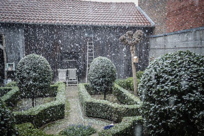 Sneeuw in Vliermaal.