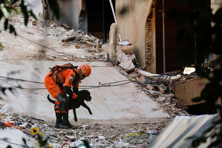 Een brandweerman zoekt met een speurhond naar overlevenden. Beeld AP