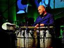 Als percussionist speelde Verdonk met bekende muzikanten als Ilse de Lange, Nick & Simon en Jan Smit.