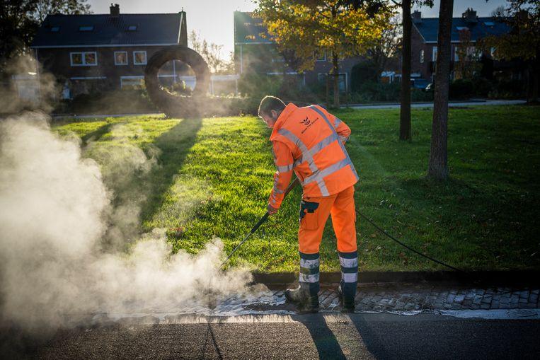 Medewerkers van het bedrijf Weed Free Service spuiten in Groningen met heet water en stoom onkruid dood. Het in 2016 ingevoerde verbod op chemische bestrijding is door de rechter ongeldig verklaard. Beeld Kees van de Veen