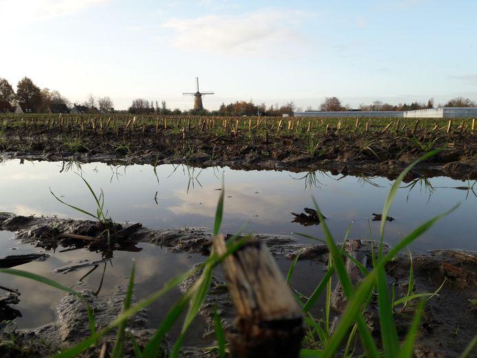 Langs de Bedrijfsweg en Spreeuwenburgerweg beschikt Oisterwijk over 5,8 hectaren die in beeld als nieuw bedrijventerrein zijn.