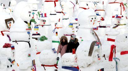 Twee ijsberen tussen 2.019 sneeuwmannen