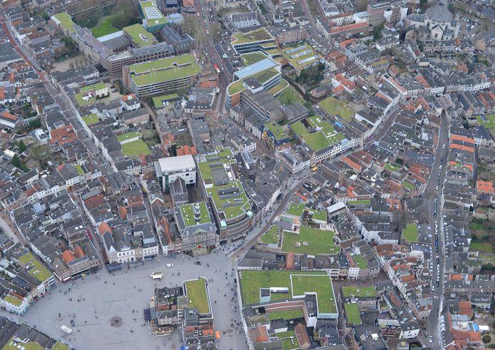Groene Daken centrum Den Bosch