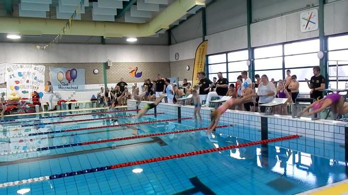 Schoolzwemkampioenschappen 2016 gemeente Sluis