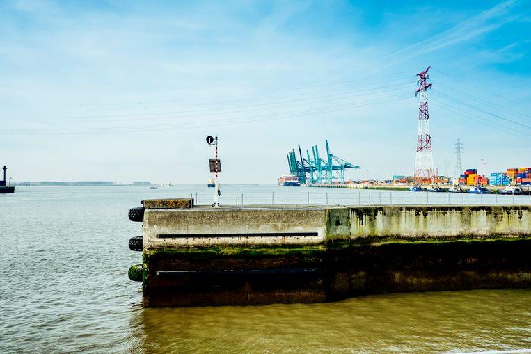 Vorig jaar werd bijna 62 ton cocaïne onderschept in de Antwerpse haven, allicht een fractie van wat er werkelijk passeert. Beeld Stefaan Temmerman