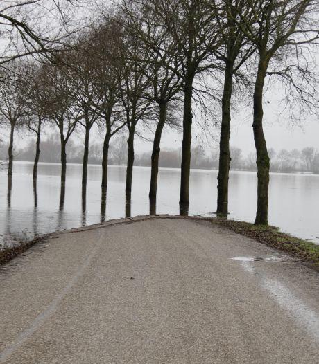 Maas buiten zijn oevers: Weg in Heijen verdwijnt onder water