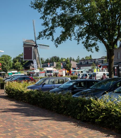Extra parkeerplekken Mierlo later door bezwaar tegen bomenkap