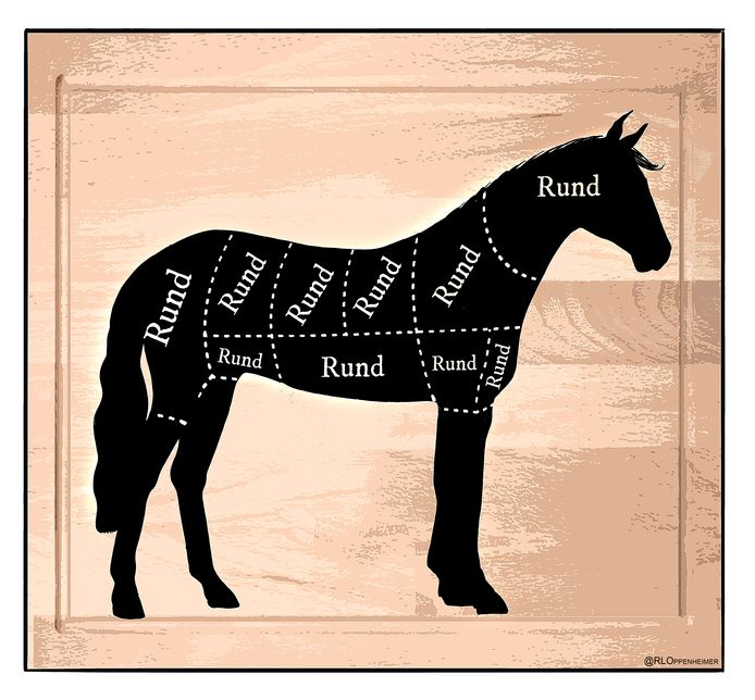 Paardenvleesfraude: rundvlees werd verkocht als paardenvlees