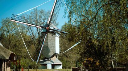 Openluchtmuseum Bokrijk gaat voor een veilige heropening met beperkte capaciteit en Limburgse versnaperingen