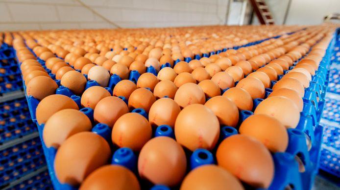 Eieren waarin resten van het verboden bestrijdingsmiddel fipronil zijn gevonden.