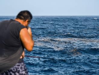Op vakantie naar Canarische Eilanden? Let dan op voor giftige algen