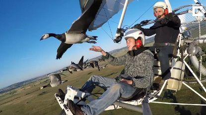 Samen met zwerm vogels de lucht in op Ursel Avia