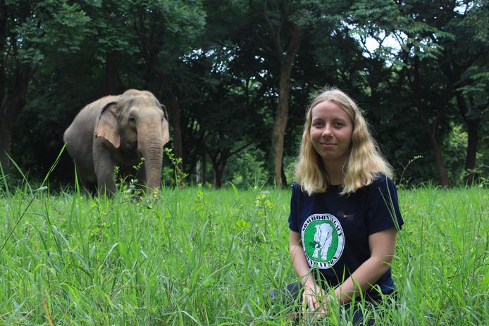 Manouk Maas uit Lierop neemt de zorg op zich voor oude, zieke, gehandicapte en geredde olifanten in Thailand.