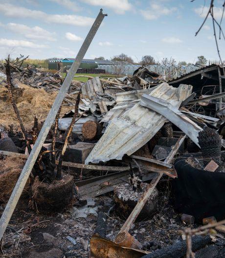 Eigenaar verbrande stal Bemmel: 'Het is een wonder dat de paarden buiten stonden'