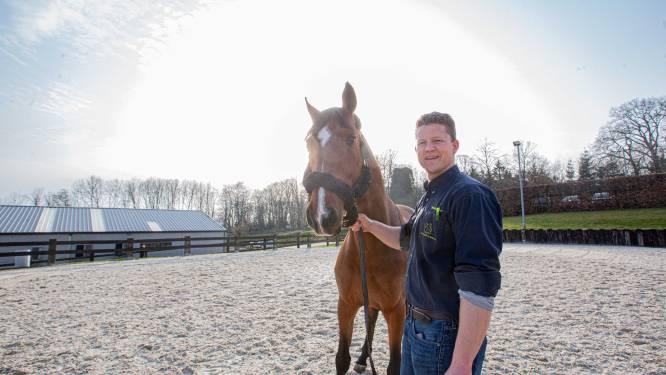 """Paardenkliniek De Morette strijdt mee tegen virus dat ruitersport treft: """"Opname alleen nodig bij ernstig zieke paarden"""""""