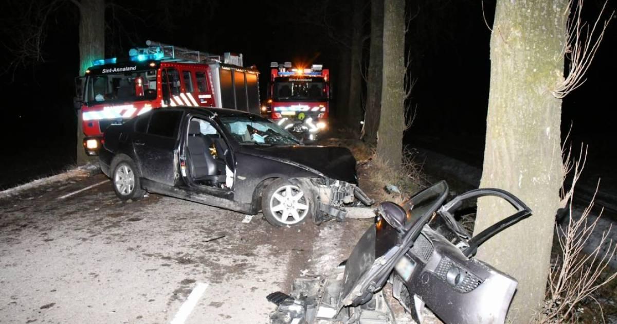 Automobilist bekneld in auto na botsing met boom.