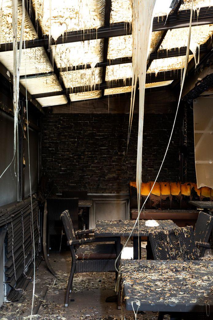 De Haagsche Beek na de brand.