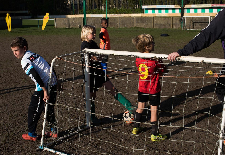 Het beleid van Voetbal Vlaanderen zet te weinig in het op het welzijn van jonge spelers, schrijven 14 Gentse clubs in een open brief. Beeld Bas Bogaerts