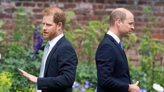 """""""Wat een triestig vertoon"""": royaltywatchers niet onder de indruk van hereniging tussen Harry en William"""