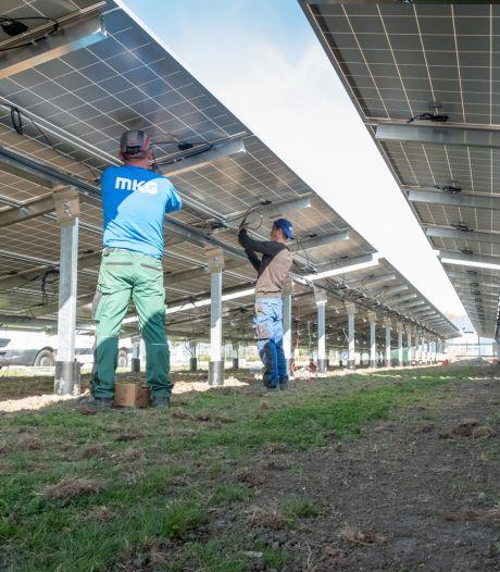 Het wil maar niet lukken met de regels voor zonneparken op Schouwen-Duiveland: 'Leuke initiatieven vallen stil'