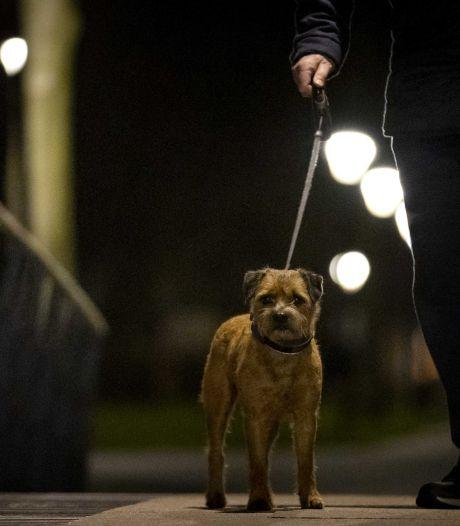Man die hond uitlaat uit het niets bedreigd met mes op de keel