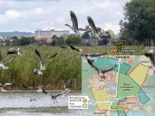 Advies: Bouw 'groene long' Arnhem-Nijmegen vol met 40.000 huizen om woningnood op te lossen