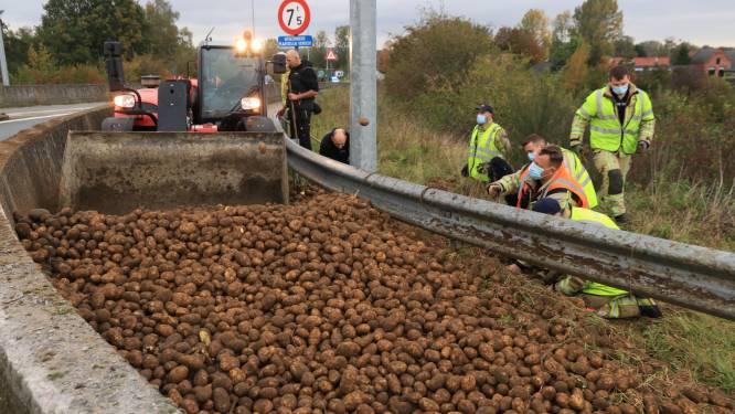 Landbouwer verliest lading aardappelen op viaduct over E34