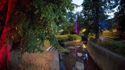 Uitgelichte bomen dompelen parkje en de Demer in een idyllische sfeer