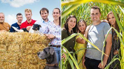 """Boeren Frits en Veerle moeten afscheid nemen in 'Boer zkt Vrouw': """"Ik dacht niet dat ik het hier zo moeilijk mee ging hebben"""""""