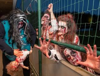 Voorlopig geen Zombietrail meer, vzw werkt aan nieuw zomers evenement
